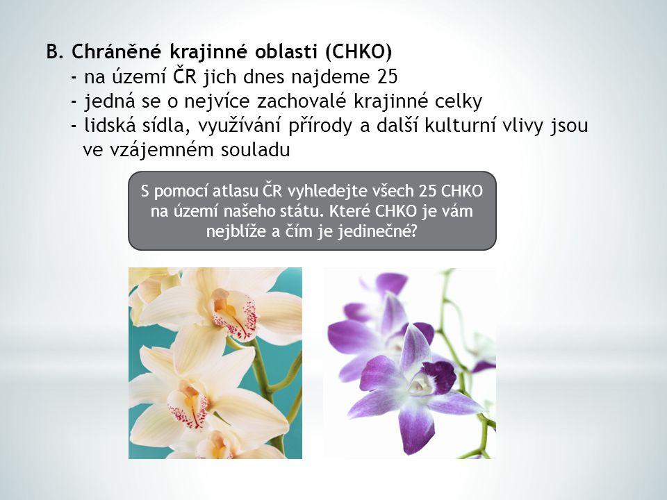 B. Chráněné krajinné oblasti (CHKO) - na území ČR jich dnes najdeme 25