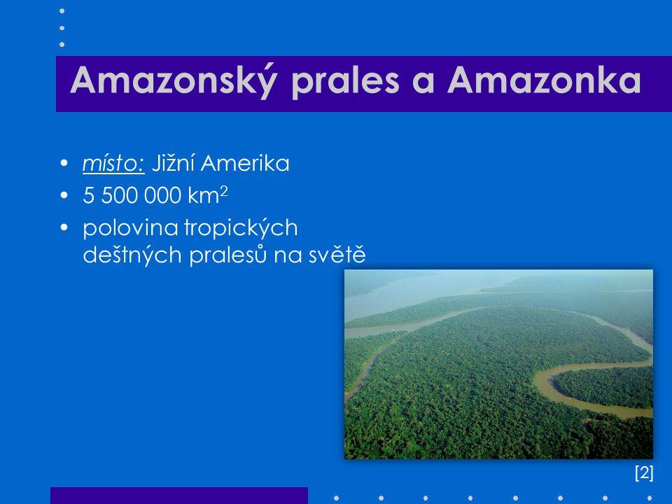 Amazonský prales a Amazonka