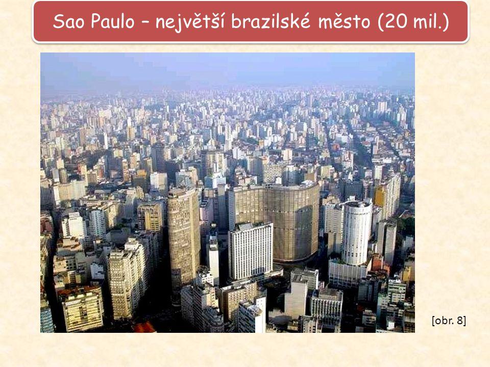 Sao Paulo – největší brazilské město (20 mil.)