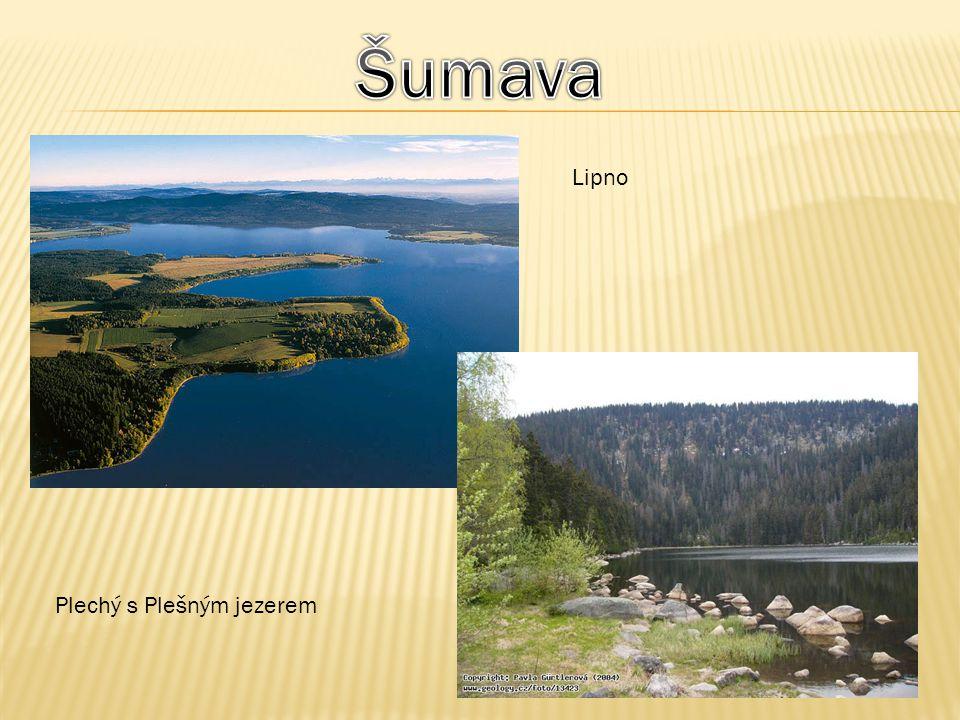 Šumava Lipno Plechý s Plešným jezerem