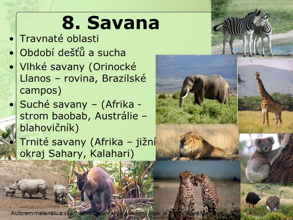 8. Savana Travnaté oblasti Období dešťů a sucha