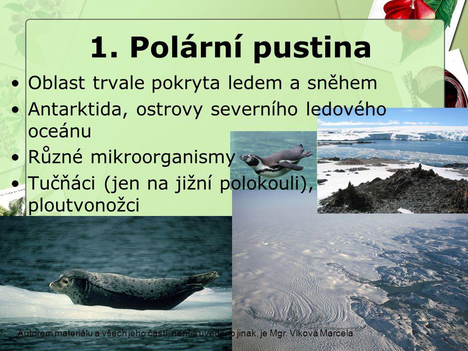 1. Polární pustina Oblast trvale pokryta ledem a sněhem