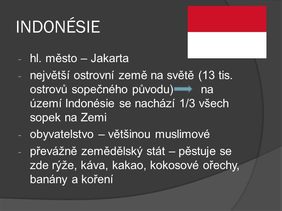 INDONÉSIE hl. město – Jakarta