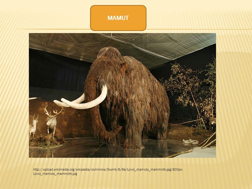 MAMUT http://upload.wikimedia.org/wikipedia/commons/thumb/6/6e/Lovci_mamutu_mammoth.jpg/800px-Lovci_mamutu_mammoth.jpg.
