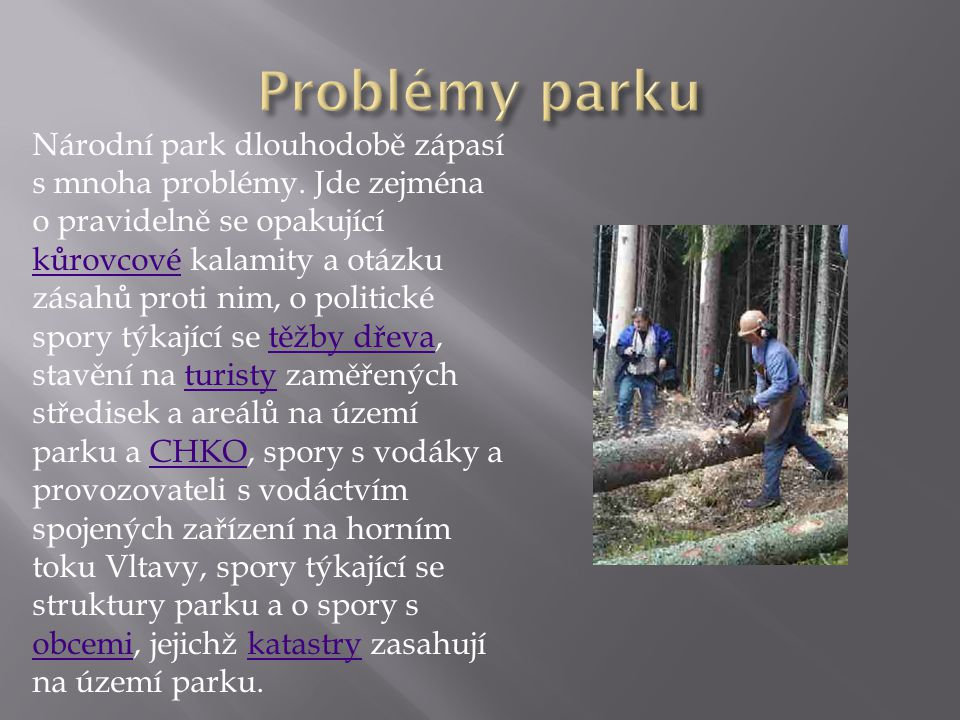 Problémy parku