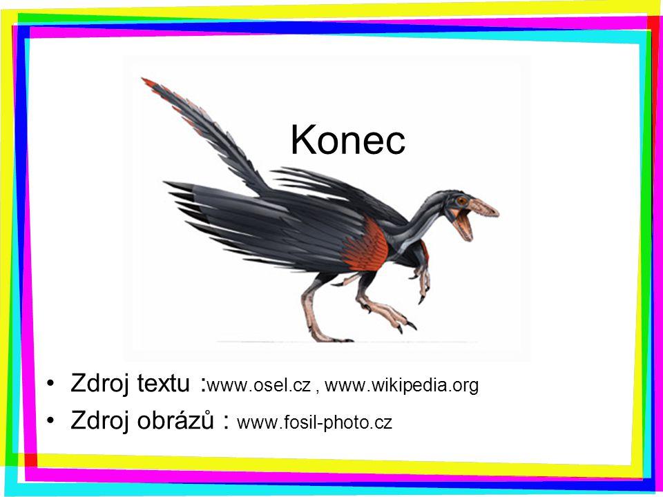 Konec Zdroj textu :www.osel.cz , www.wikipedia.org
