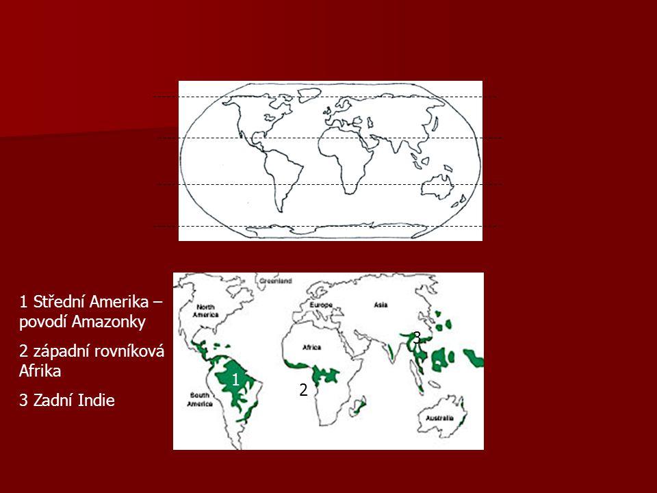 1 Střední Amerika – povodí Amazonky