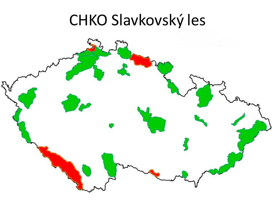 CHKO Slavkovský les