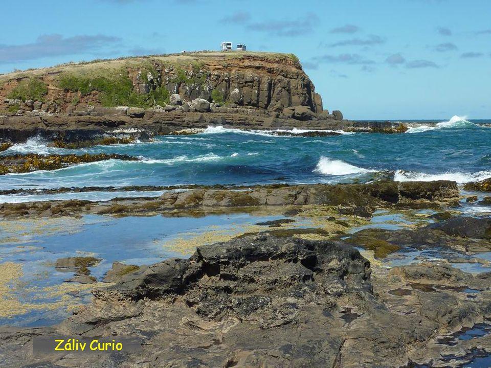 Záliv Curio