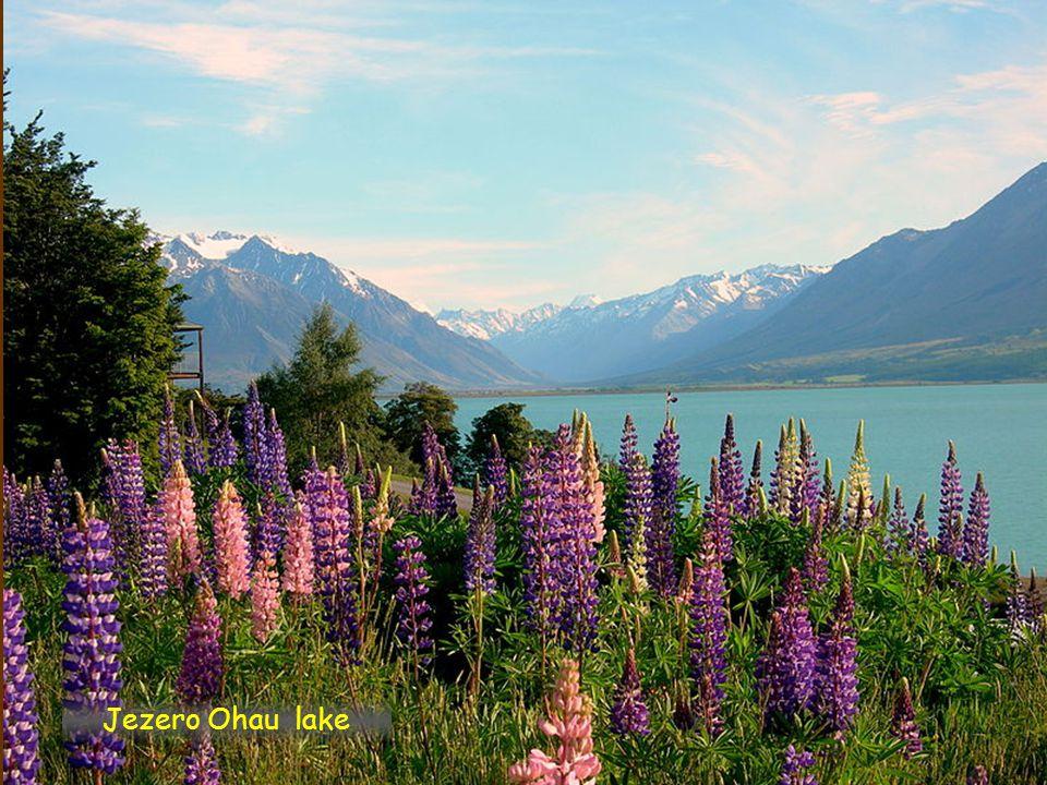 Jezero Ohau lake