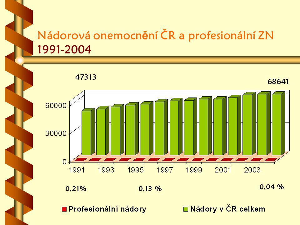Nádorová onemocnění ČR a profesionální ZN 1991-2004