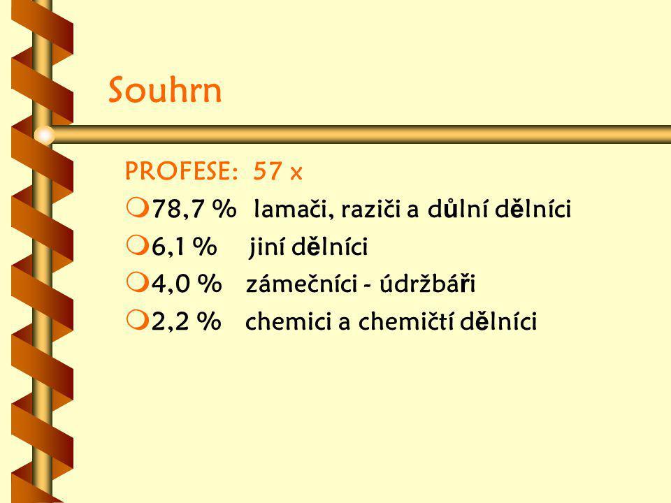 Souhrn PROFESE: 57 x 78,7 % lamači, raziči a důlní dělníci