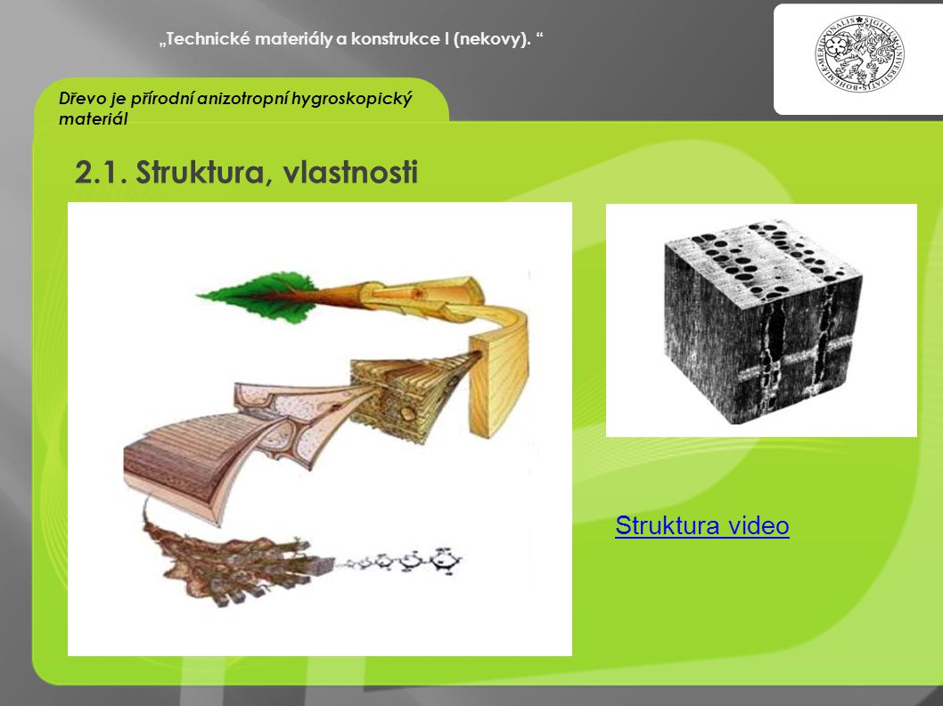 2.1. Struktura, vlastnosti Struktura video