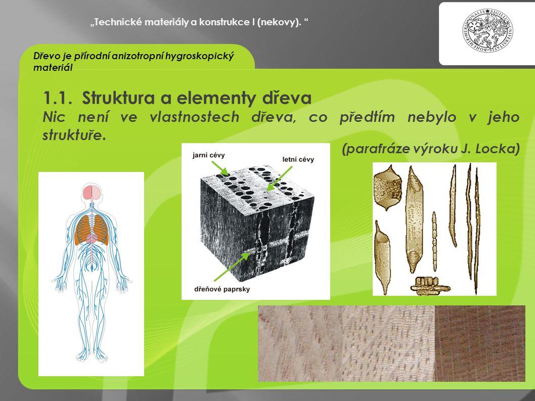 1.1. Struktura a elementy dřeva