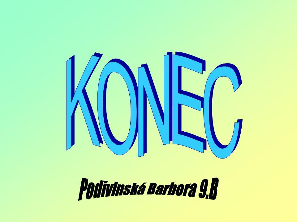 KONEC Podivinská Barbora 9.B