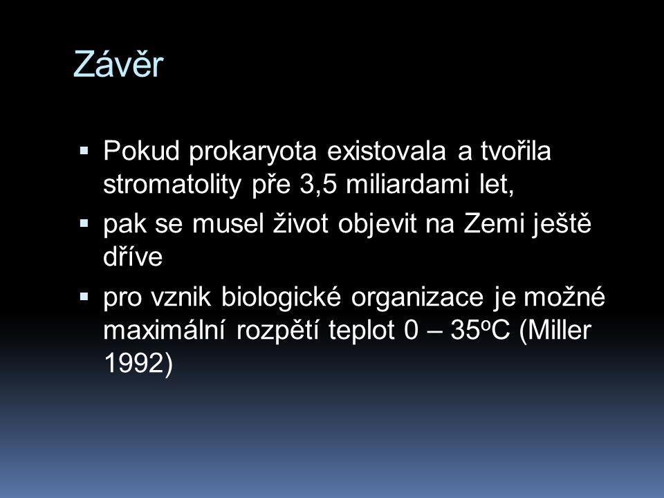 Závěr Pokud prokaryota existovala a tvořila stromatolity pře 3,5 miliardami let, pak se musel život objevit na Zemi ještě dříve.
