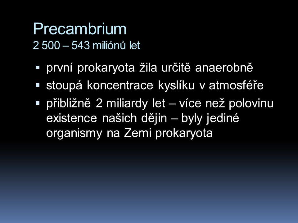 Precambrium 2 500 – 543 miliónů let