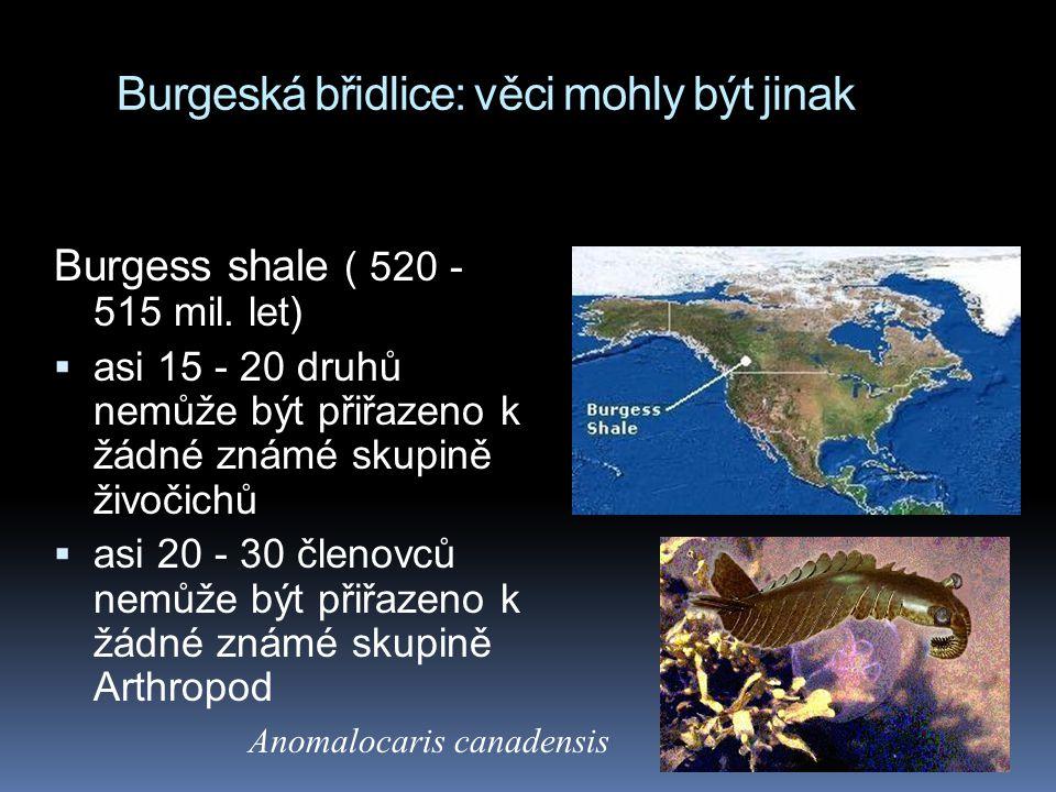 Burgeská břidlice: věci mohly být jinak
