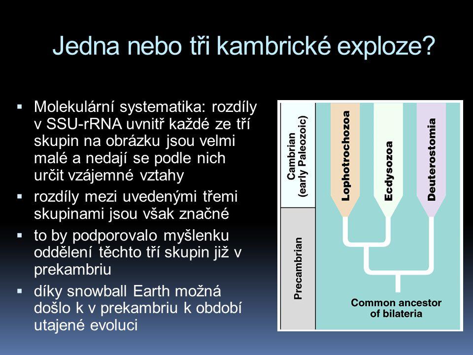 Jedna nebo tři kambrické exploze