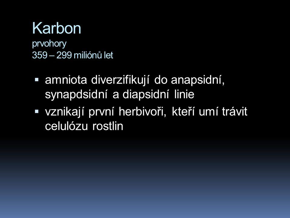 Karbon prvohory 359 – 299 miliónů let