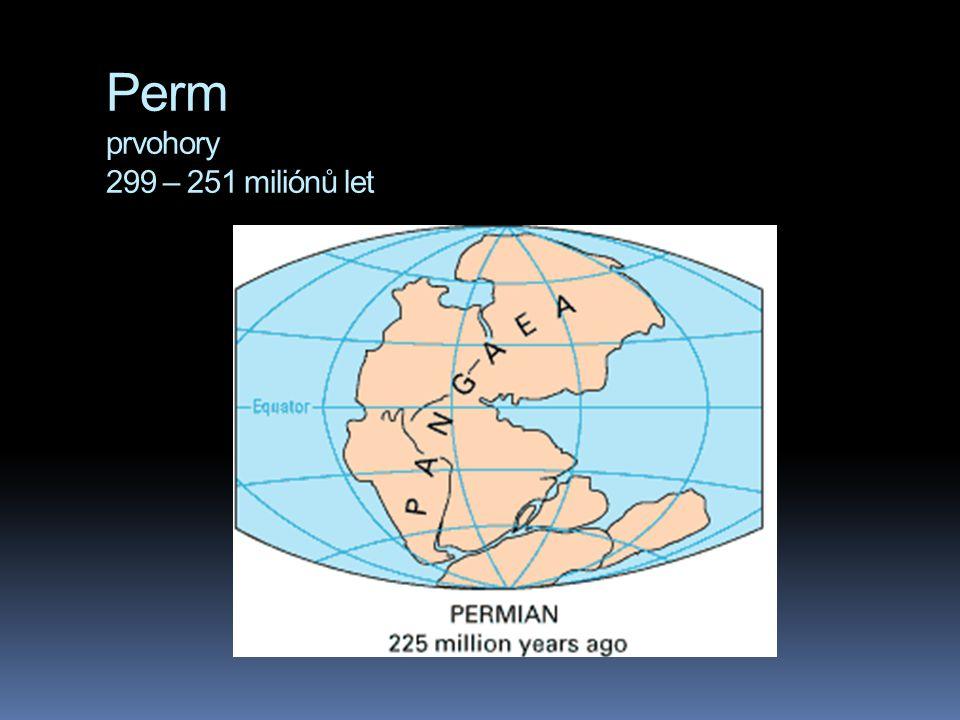 Perm prvohory 299 – 251 miliónů let