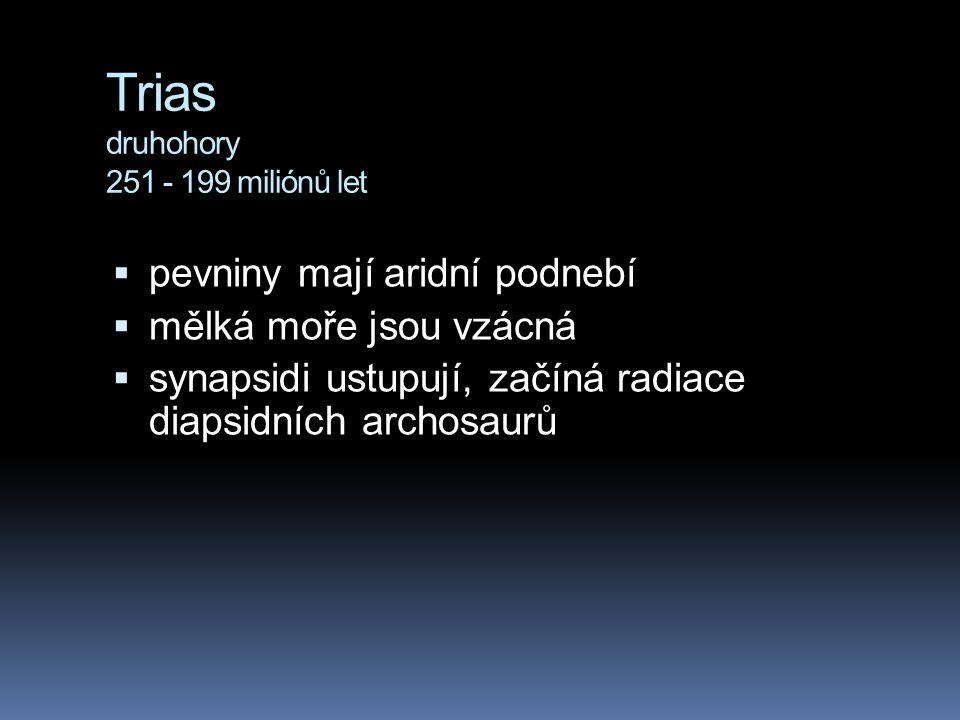 Trias druhohory 251 - 199 miliónů let