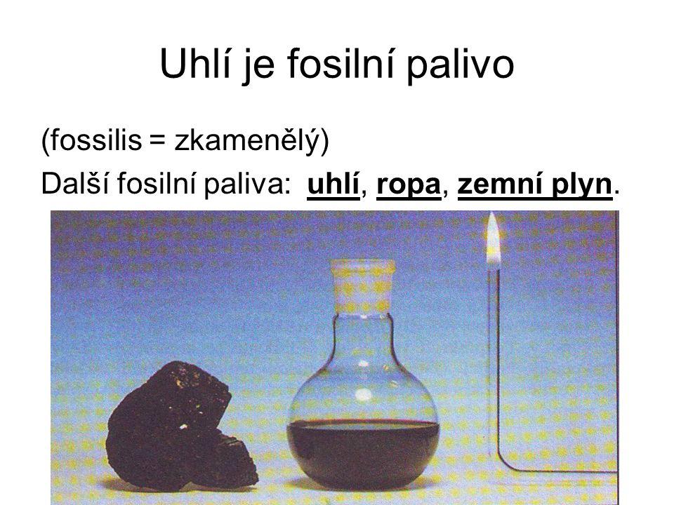 Uhlí je fosilní palivo (fossilis = zkamenělý)