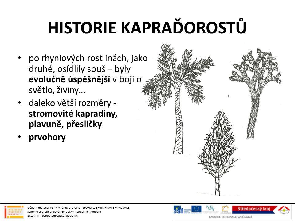 HISTORIE KAPRAĎOROSTŮ
