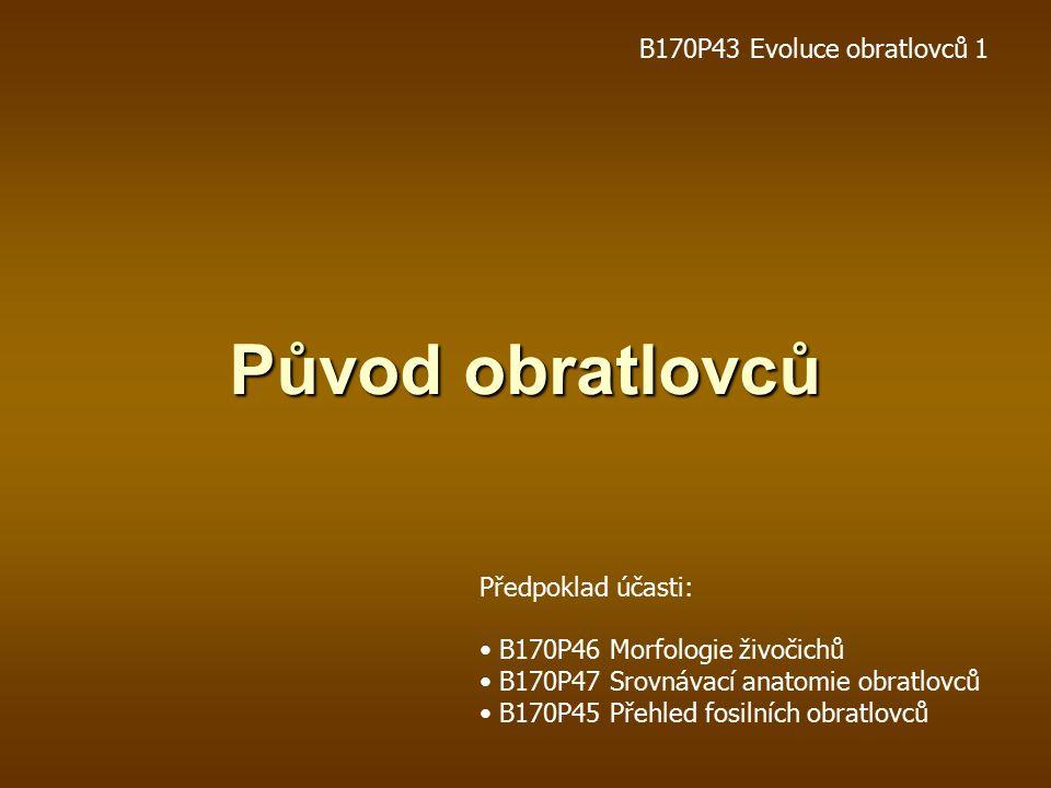 Původ obratlovců B170P43 Evoluce obratlovců 1 Předpoklad účasti: