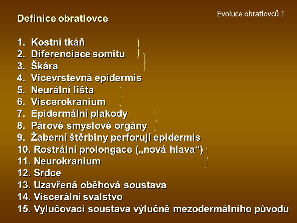 Vícevrstevná epidermis Neurální lišta Viscerokranium