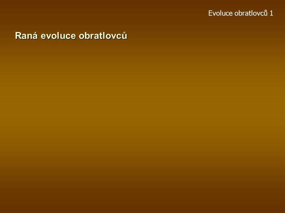 Raná evoluce obratlovců