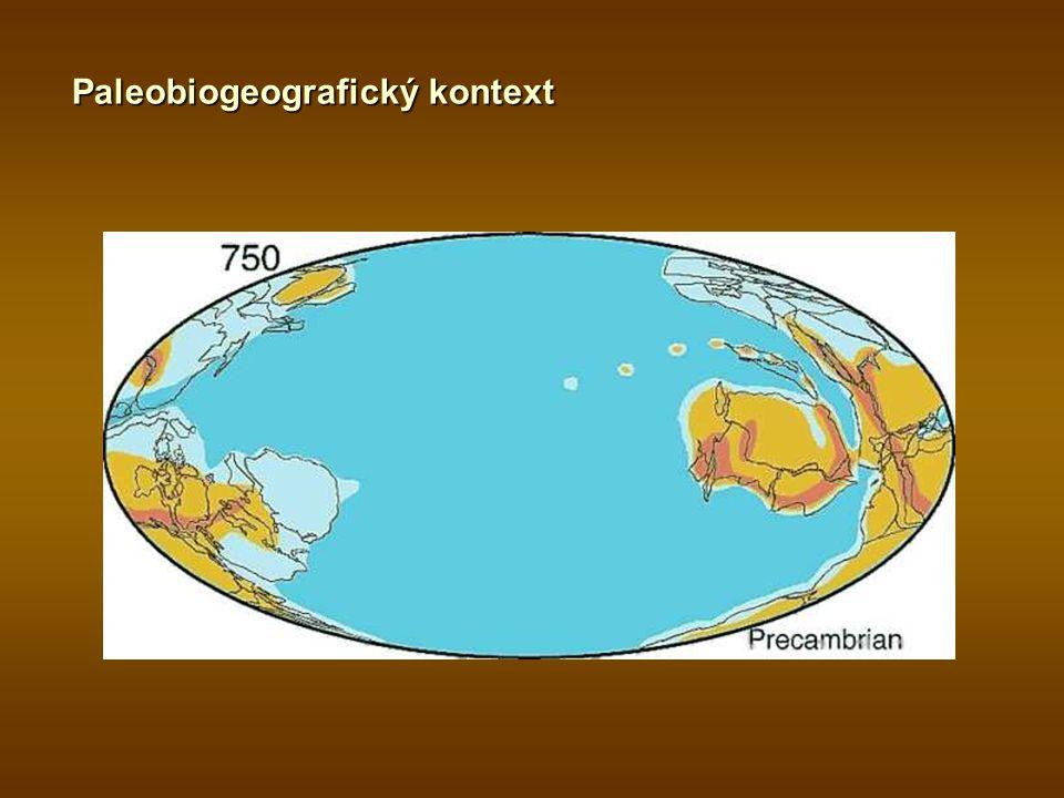 Paleobiogeografický kontext