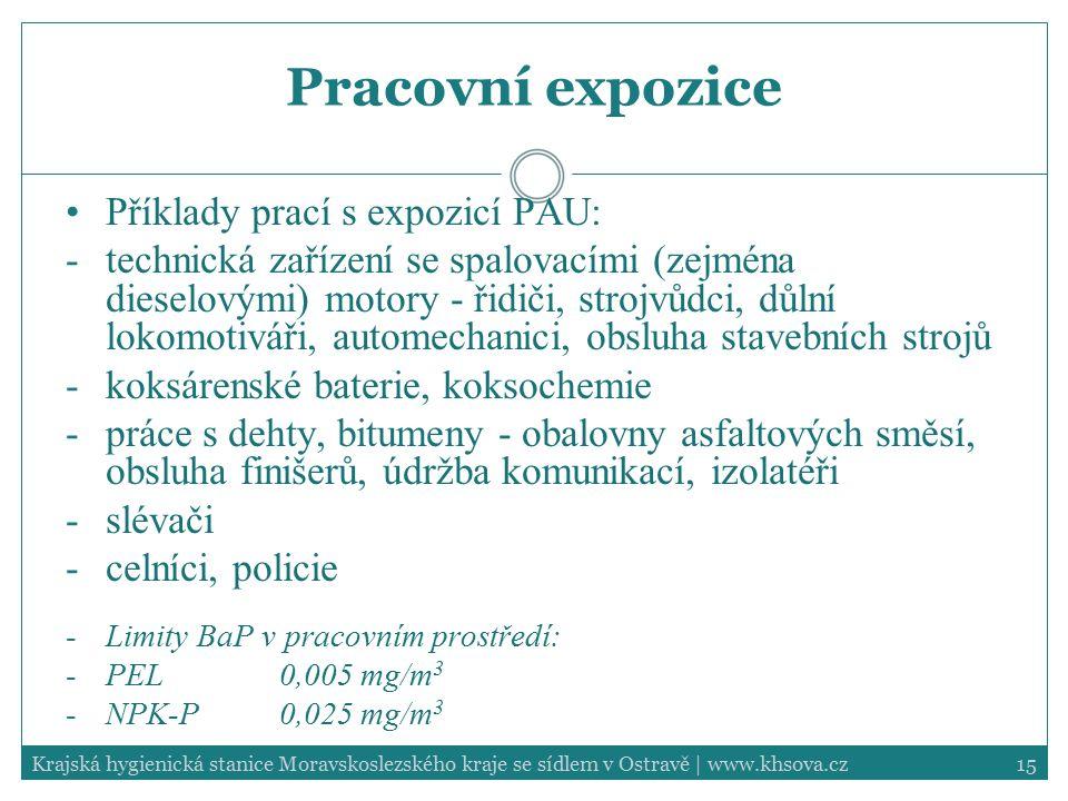 Pracovní expozice Příklady prací s expozicí PAU: