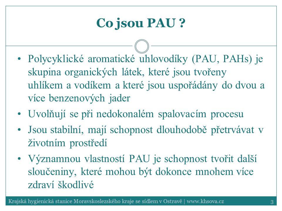 Co jsou PAU