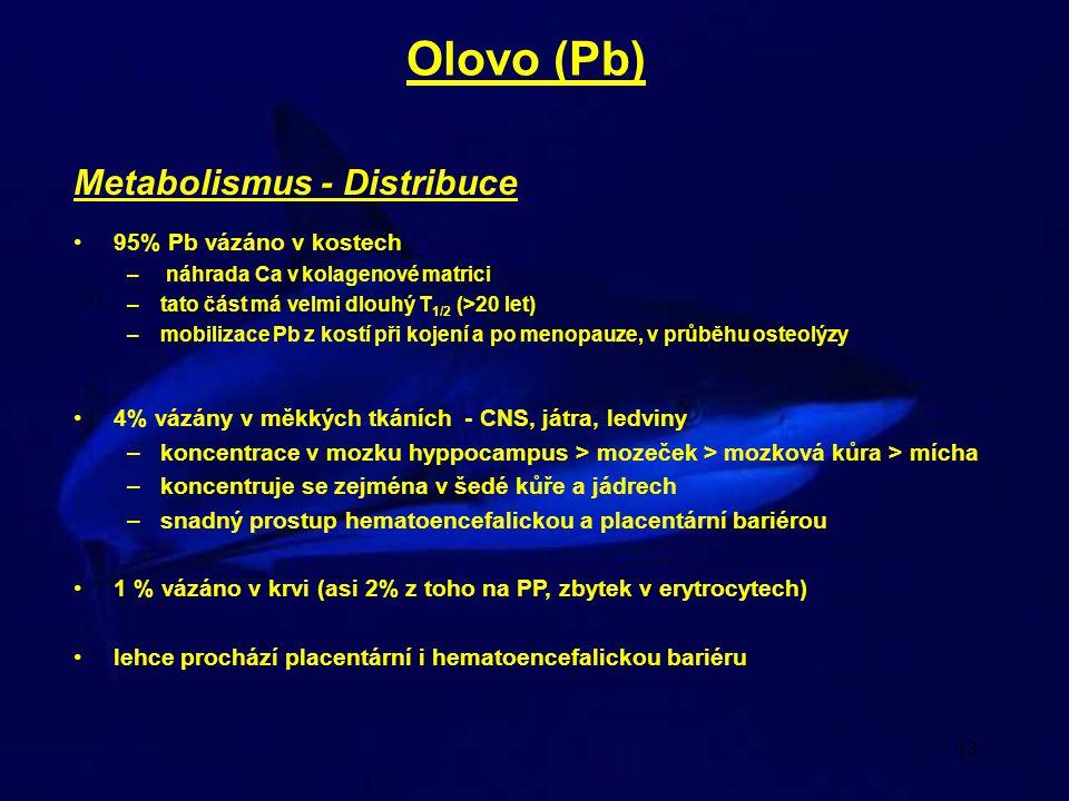Olovo (Pb) Metabolismus - Distribuce 95% Pb vázáno v kostech