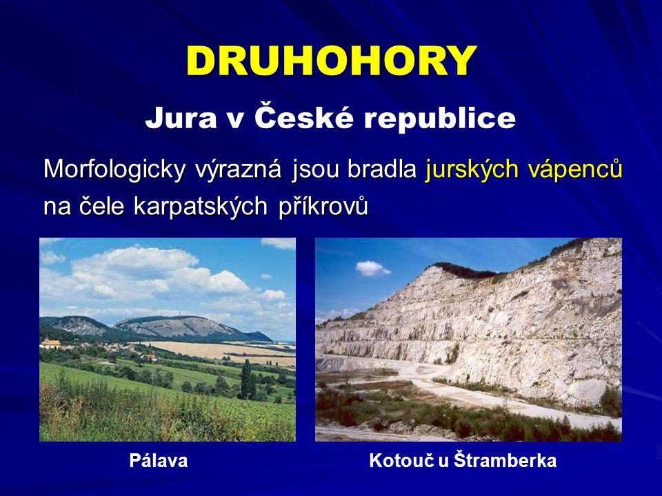 DRUHOHORY Jura v České republice