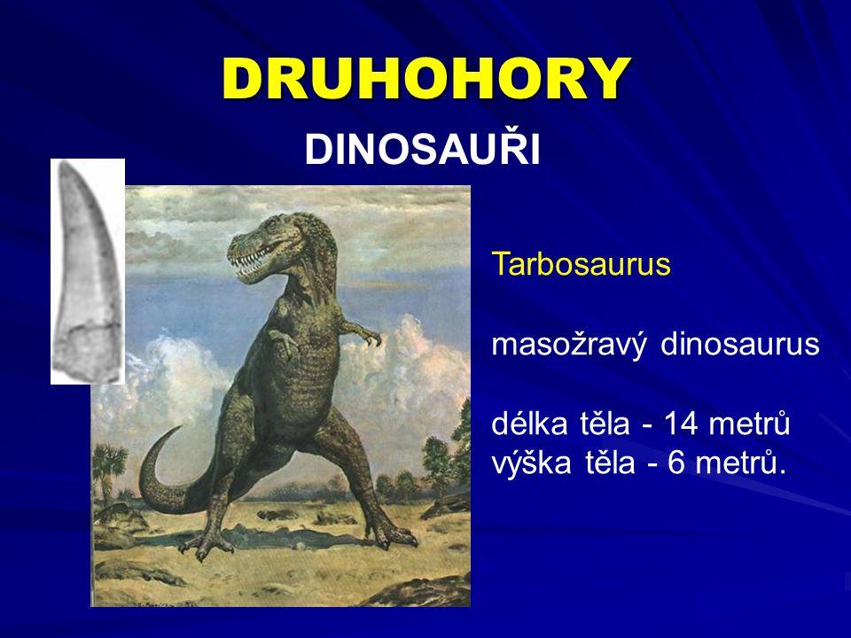 DRUHOHORY DINOSAUŘI Tarbosaurus masožravý dinosaurus
