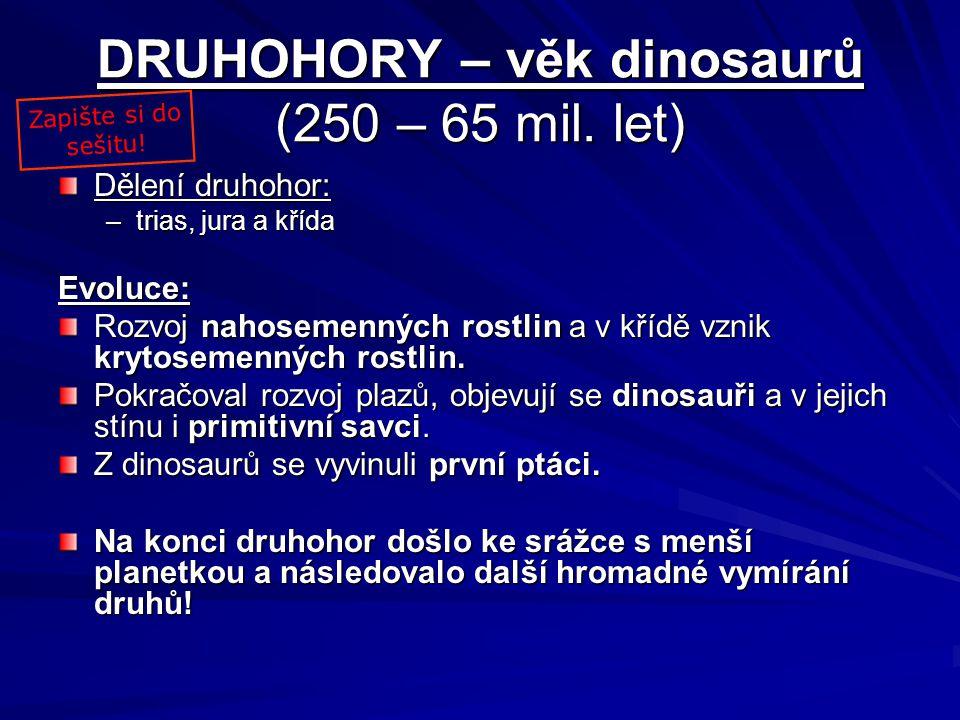 DRUHOHORY – věk dinosaurů (250 – 65 mil. let)