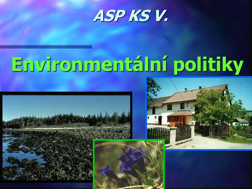 Environmentální politiky