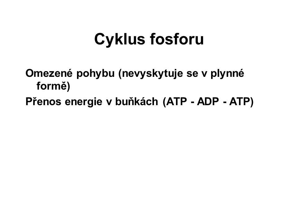 Cyklus fosforu Omezené pohybu (nevyskytuje se v plynné formě)