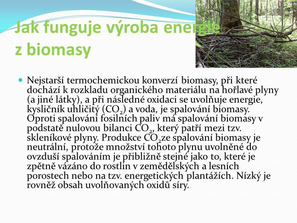 Jak funguje výroba energie z biomasy