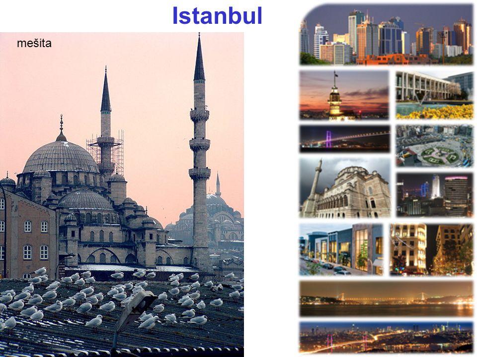 Istanbul mešita