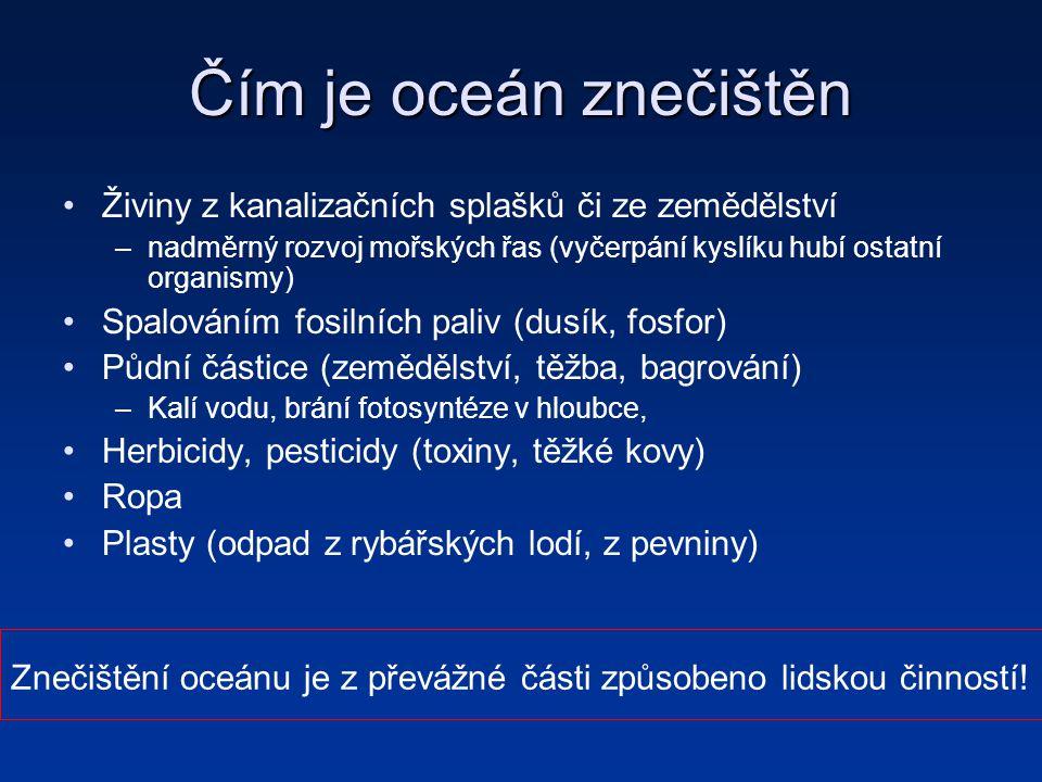 Čím je oceán znečištěn Živiny z kanalizačních splašků či ze zemědělství. nadměrný rozvoj mořských řas (vyčerpání kyslíku hubí ostatní organismy)