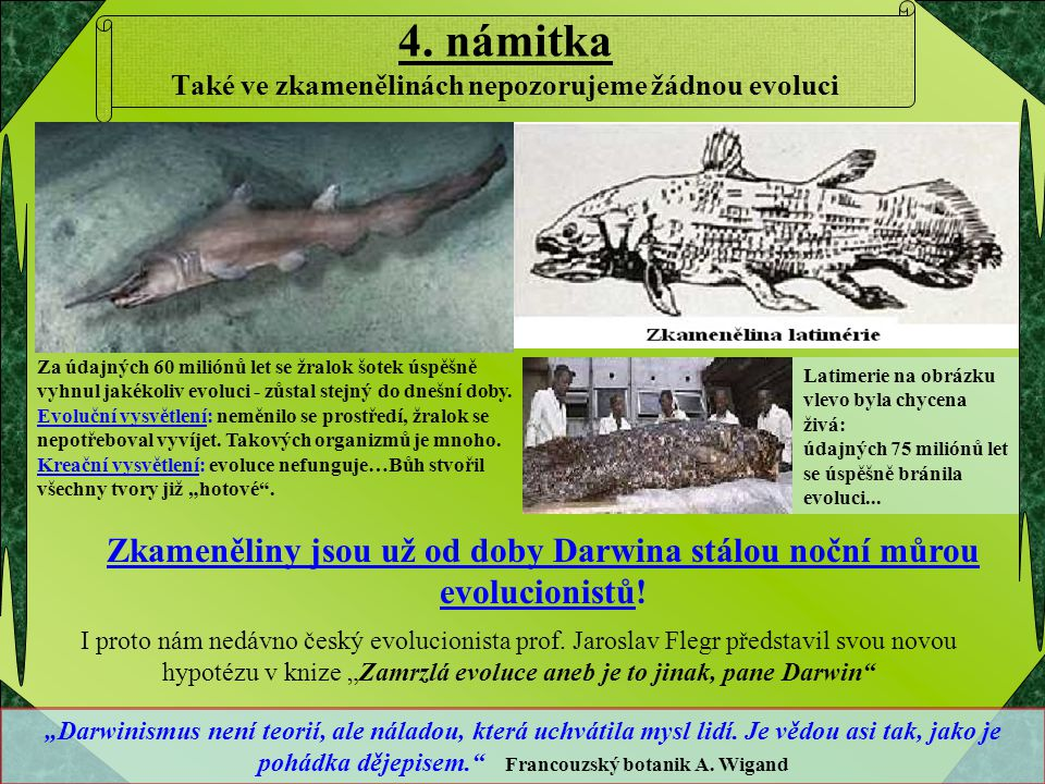 4. námitka Také ve zkamenělinách nepozorujeme žádnou evoluci