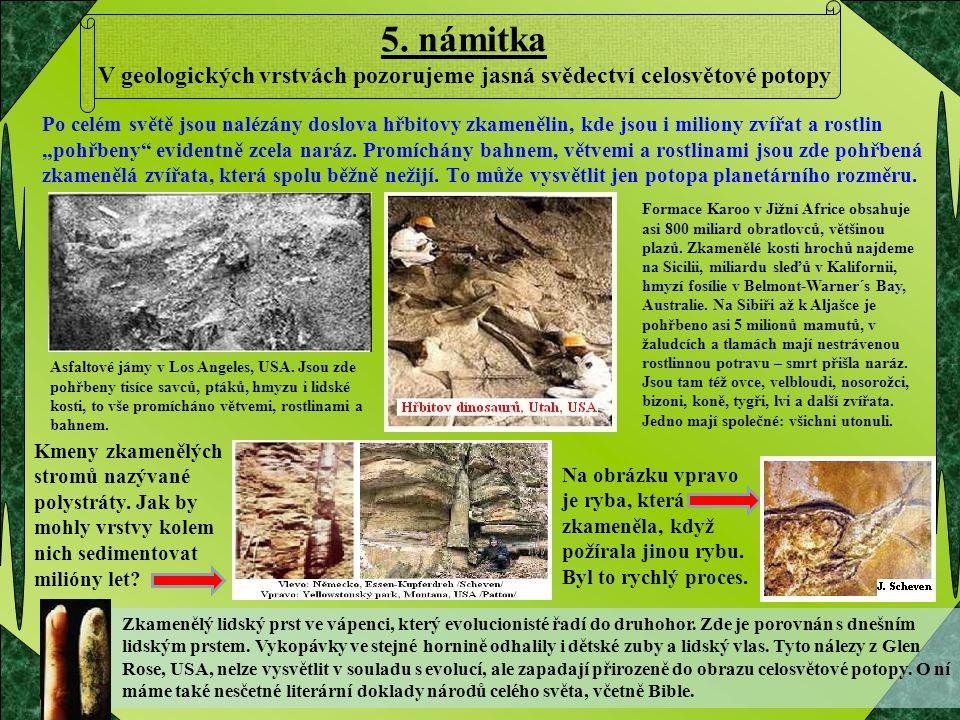 5. námitka V geologických vrstvách pozorujeme jasná svědectví celosvětové potopy