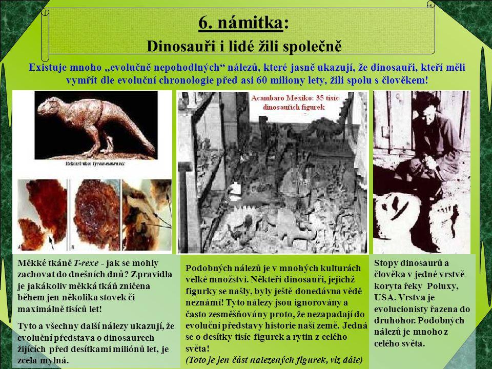 6. námitka: Dinosauři i lidé žili společně