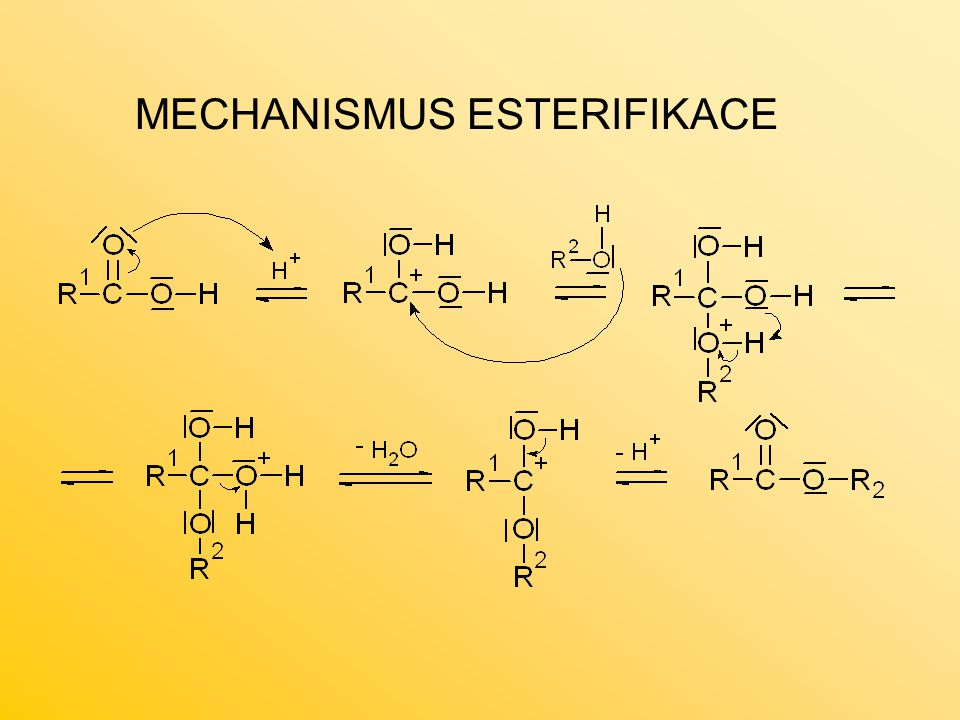 MECHANISMUS ESTERIFIKACE