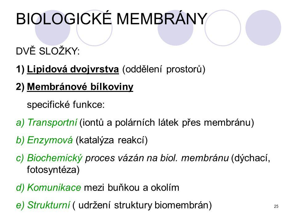 BIOLOGICKÉ MEMBRÁNY DVĚ SLOŽKY: