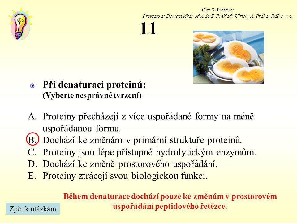 11 Při denaturaci proteinů: