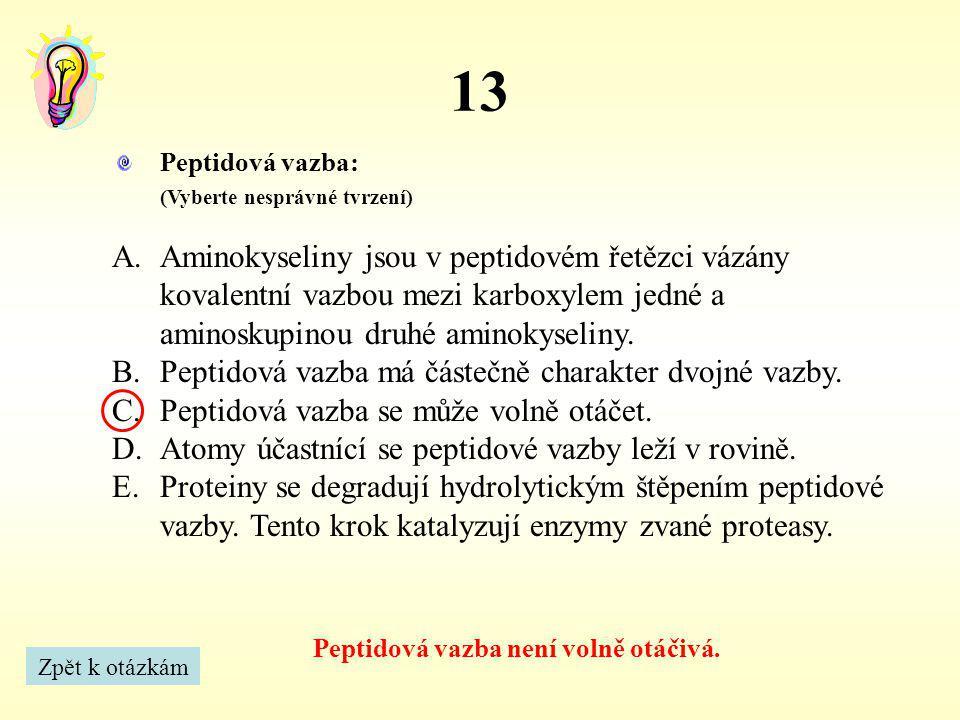 Peptidová vazba není volně otáčivá.